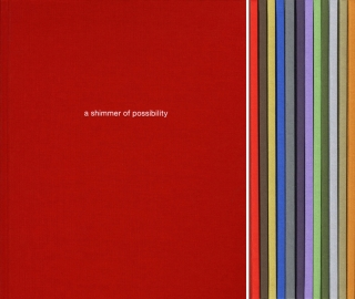 Paul Graham: A Shimmer of Possibility [IMPERFECT]. Paul GRAHAM